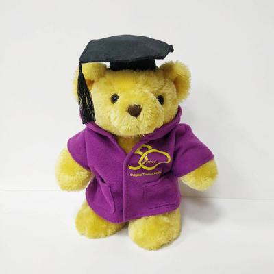 PhD Graduation Teddy Bear