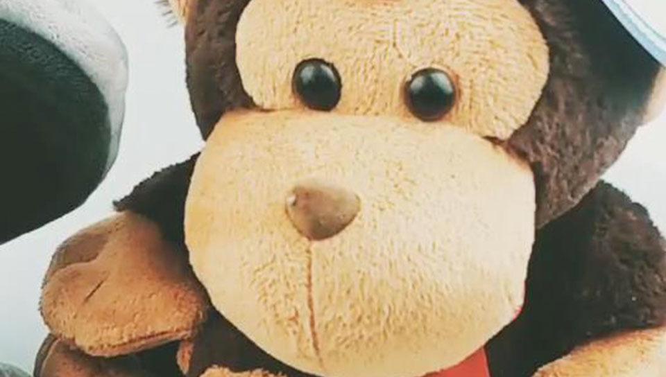 Custom Stuffed Teddy Bears