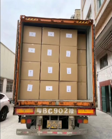 The Process of Packing Plush Toy Goods into Truck and Shipping